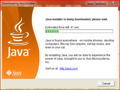 java runtime environment errors
